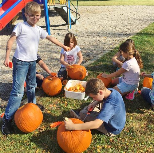 Students carve pumpkins outdoors on a sunny day