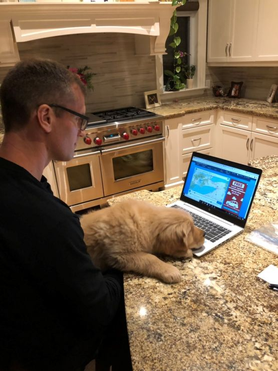 A man works in a kitchen at a laptop with a yellow puppy